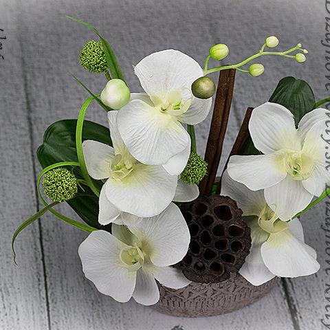 Luxusný design s moderní bielou orchideou.